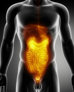 Gastric acid