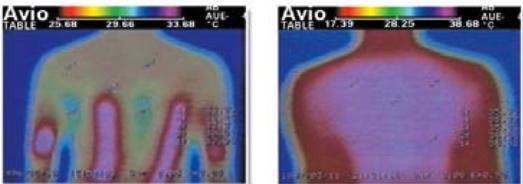 Comparison-heatmat-biomat-from-Richway