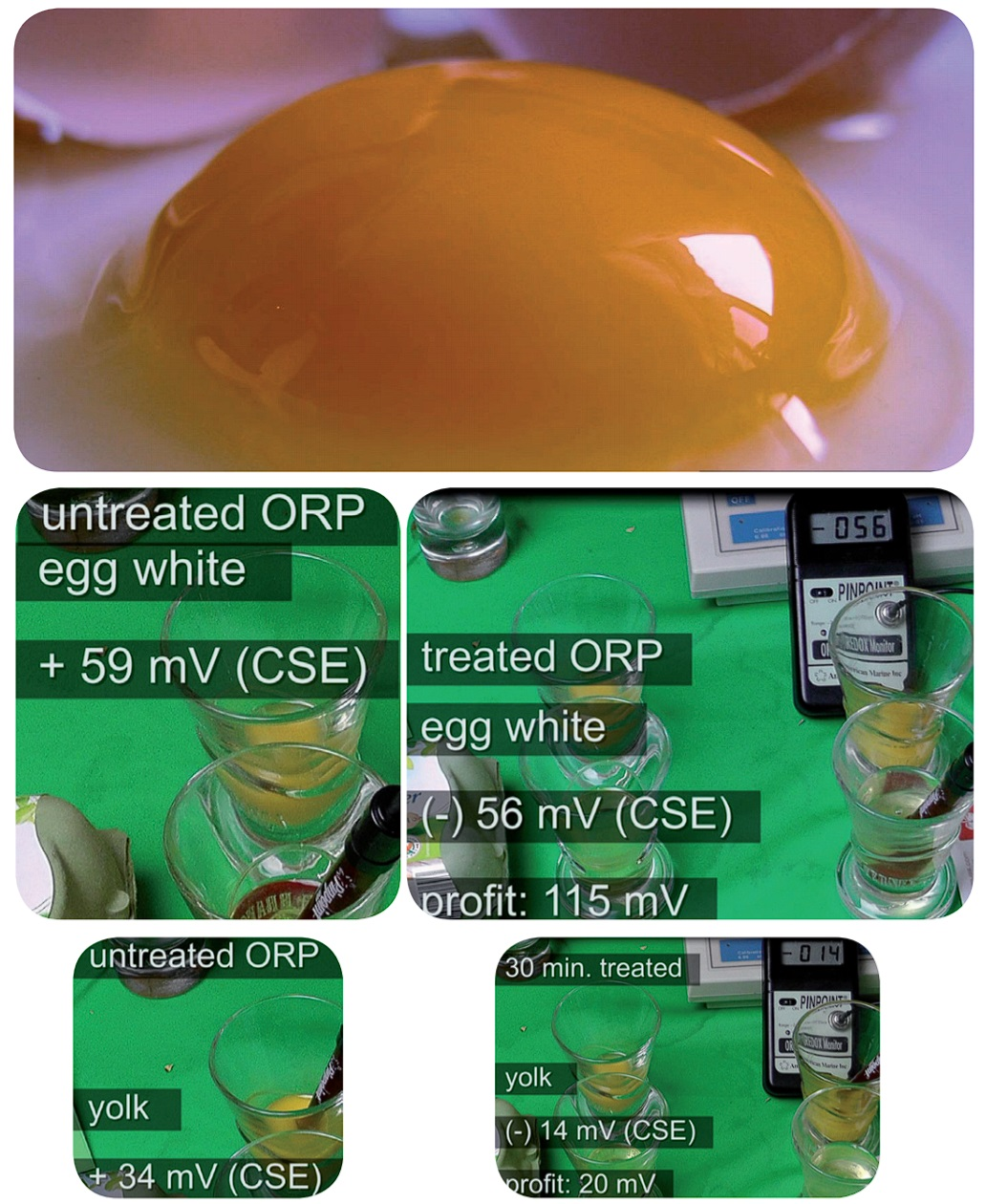 EAW-Eggs-in-alkaline-water