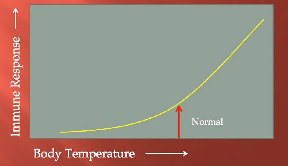 body-temperatureJY8X6rG1irc0J