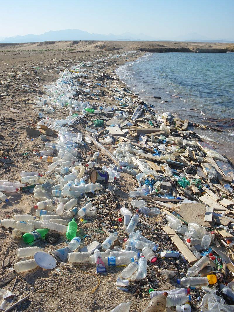 Sea-Pollution-Bottle