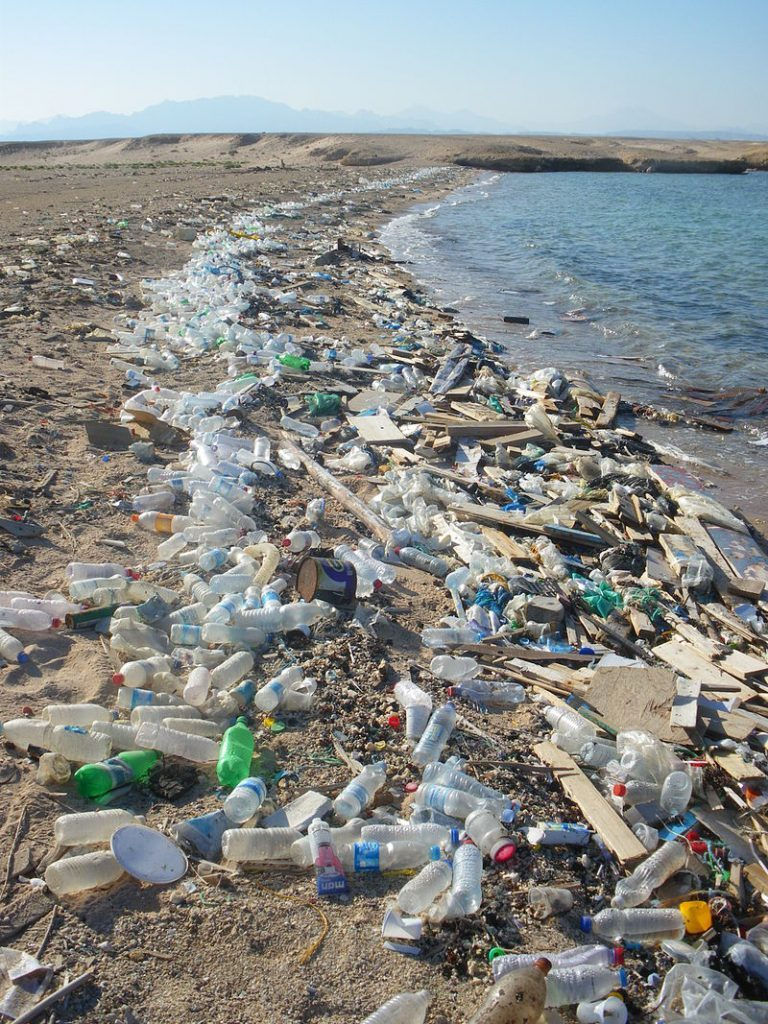 EAW-Bottle-pollution-beach
